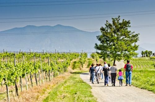 Cosa fare in primavera a Brescia e provincia