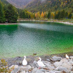 In bici al laghetto di Valbione