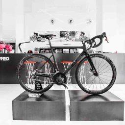 T Red Bike Adventures