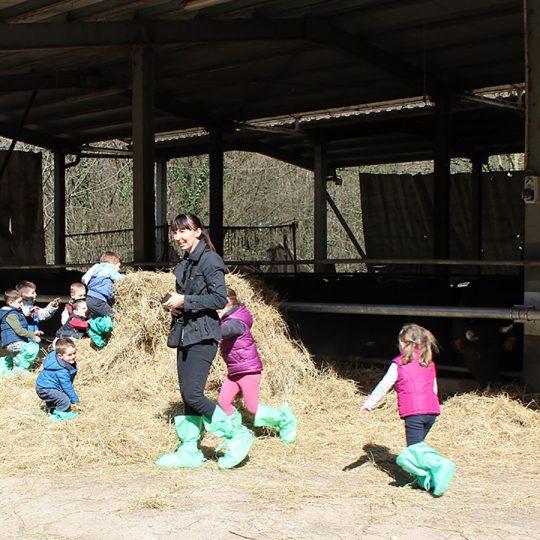 Azienda Agricola Biobiò attività didattiche