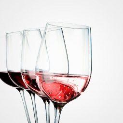 degustazione vini Cantina San Michele