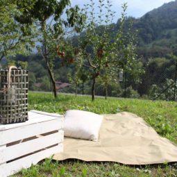 picnic Cooperativa Voilà
