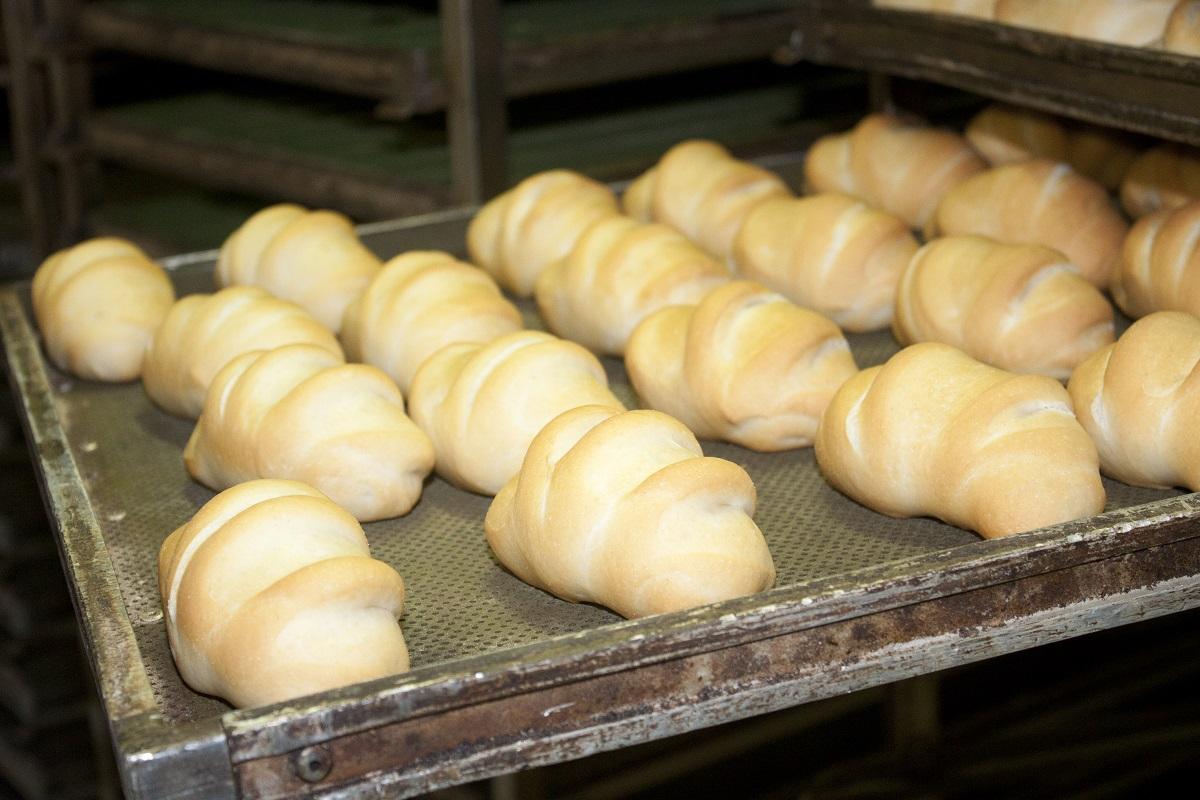 Pane in forno della Linea Pane di Odolo, Brescia