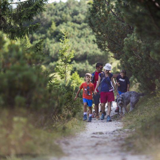 Passeggiata nel bosco, Maniva. Credits Andrea Pettinari Photography
