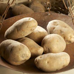 Patata di Ossimo
