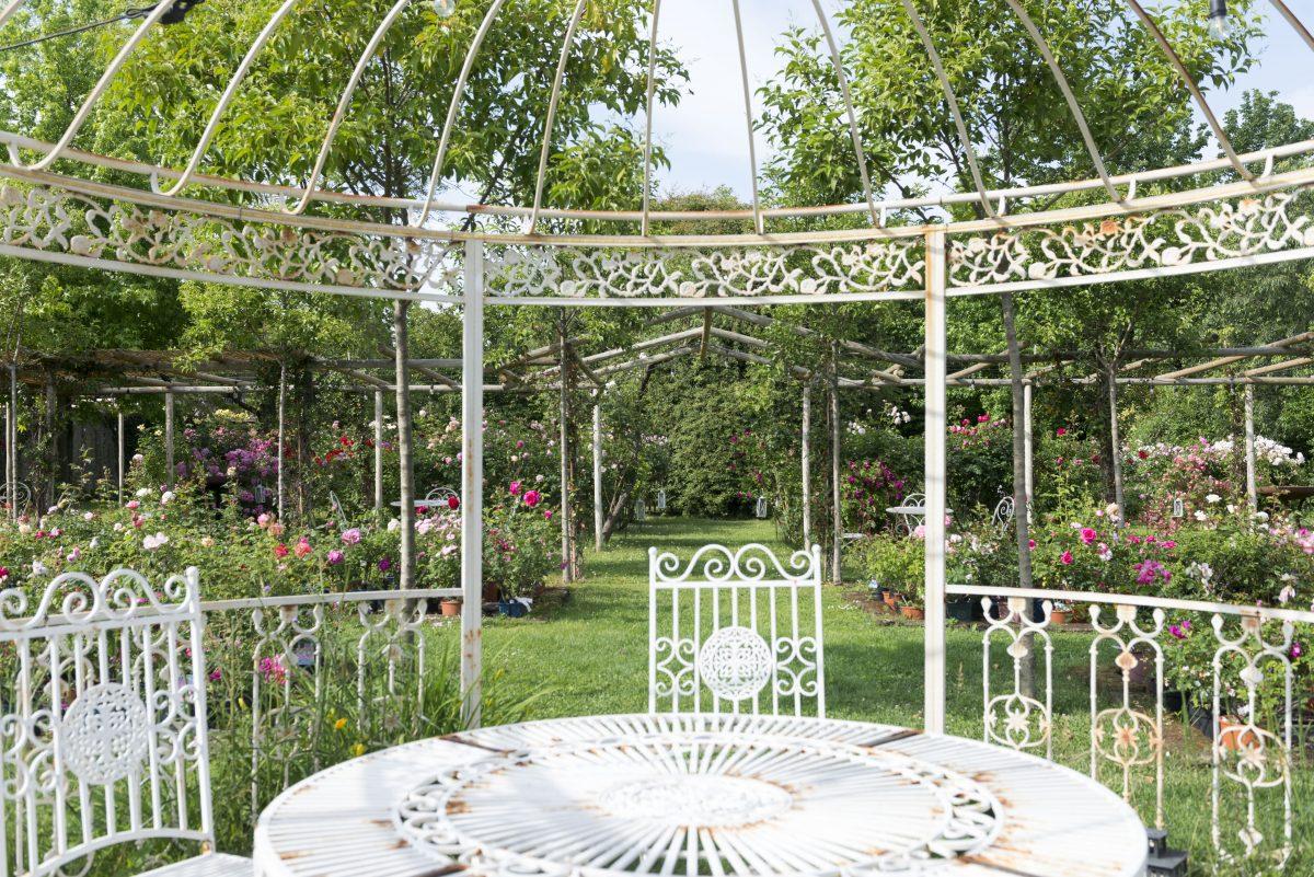 giardino-rose-castello-quistini-rovato-franciacorta