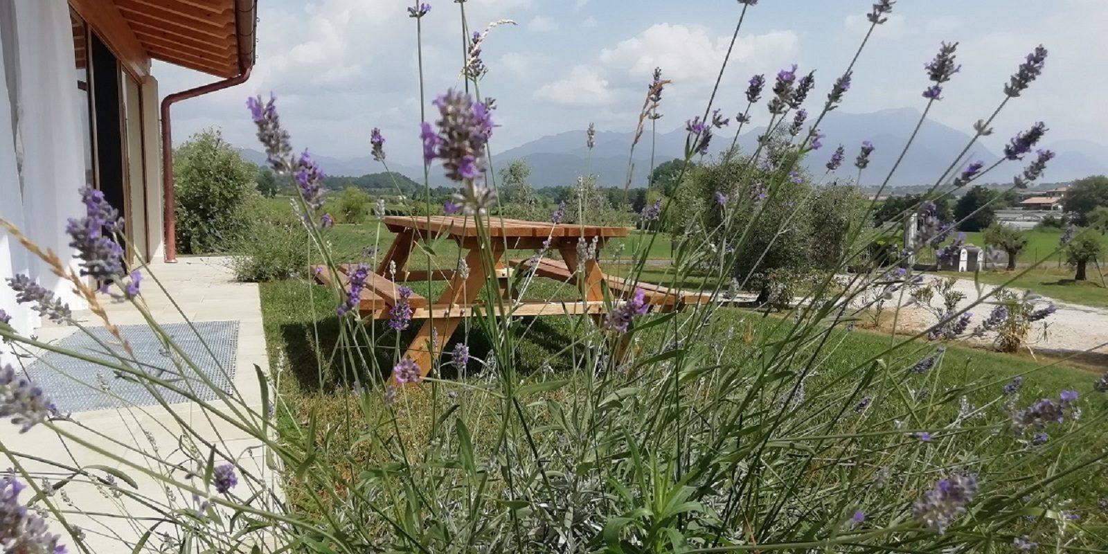 Agriturismo Fioralba, lago di Garda