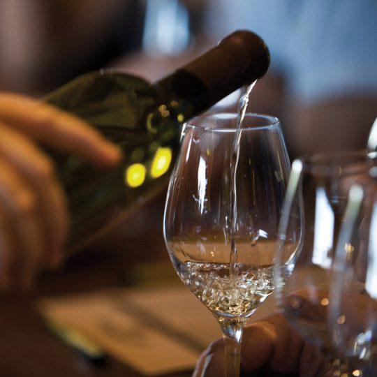 Degustazione Vino Lugana