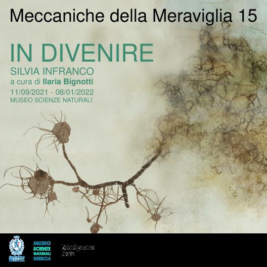 mostra In Divenire - Silvia Infranco - Museo Scienze Naturali Brescia